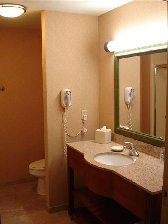 Hampton Inn Dover: Bathroom in King room