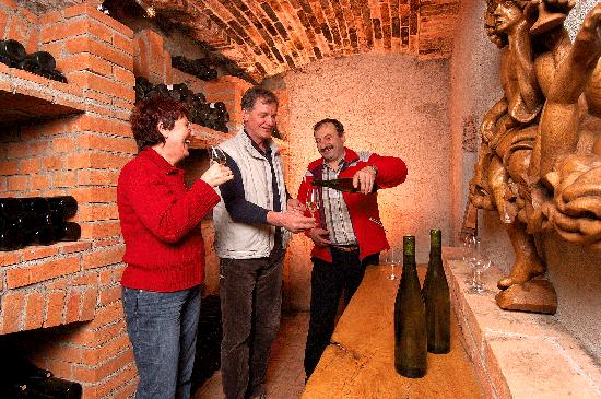 Urska Tourist Farm : wine celler