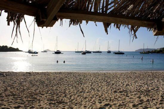 Virgin Islands Campground: Honeymoon Beach