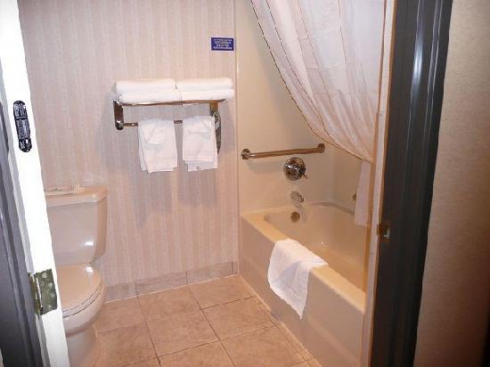 Quality Inn Estes Park: バスルーム