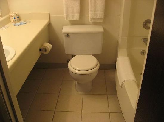 Rodeway Inn Estes Park: バスルーム