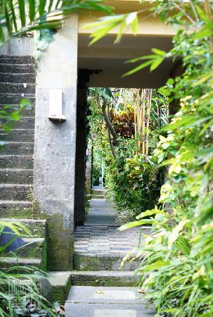 بارونج ريزورت آند سبا: Barong resort - leading to other villas