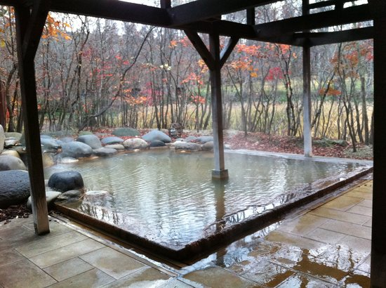 Yakumo-cho, Япония: 大浴場 露天風呂