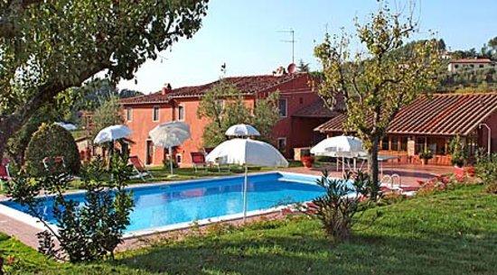 Agriturismo San Gallo di Montecarlo: piscina solarium