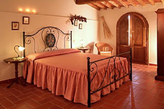 Montecarlo, Italy: Ortensie