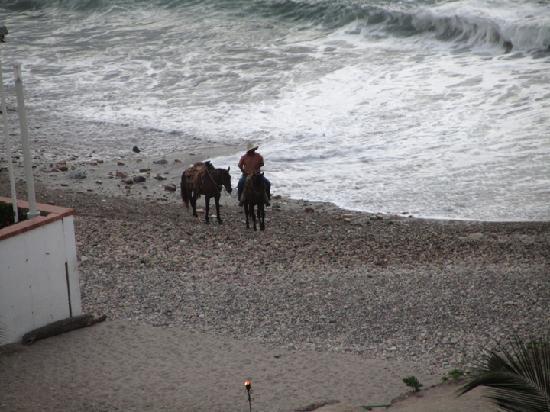 Sheraton Buganvilias Resort & Convention Center: Tout juste bonne à faire du cheval