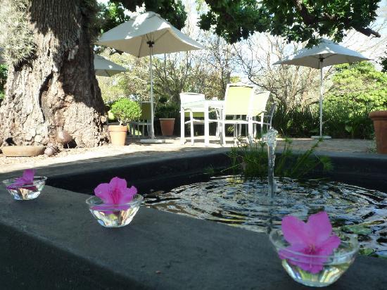 Rothman Manor: Breakfast Patio