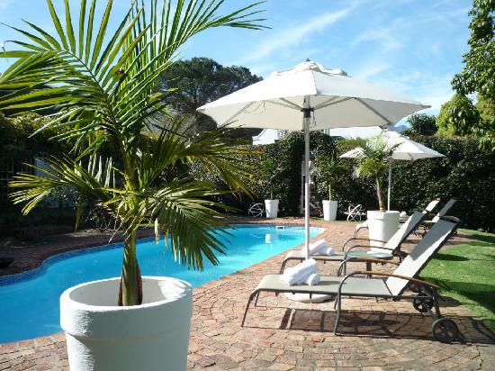 Rothman Manor: Pool Area