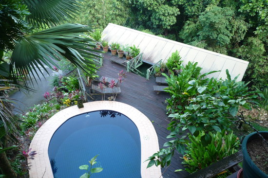 Nanga Damai Homestay: The swimmingpool