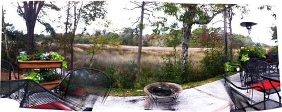 Wake Up Coffee: beautiful spot overlooking the marsh just outside their back door!!!