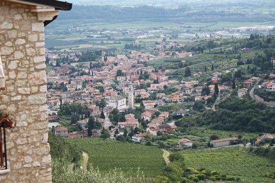 Dalla Rosa Alda: View from the garden