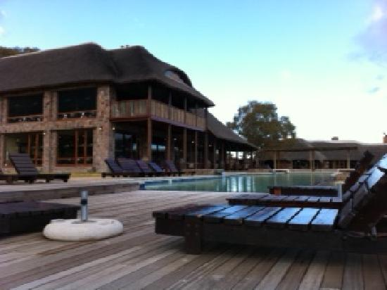 Aquila Private Game Reserve - Day Trip Safari: View accross the swimming pool of the dining room