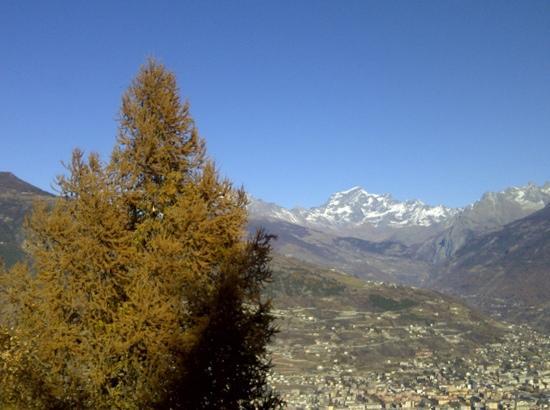 Il Giardino dell'Artemisia: panorama