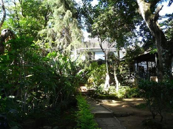 Capricorn Hotel: tropischer Garten