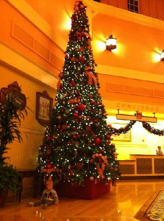 Christmas Tree In Lobby Picture Of Disney S Saratoga