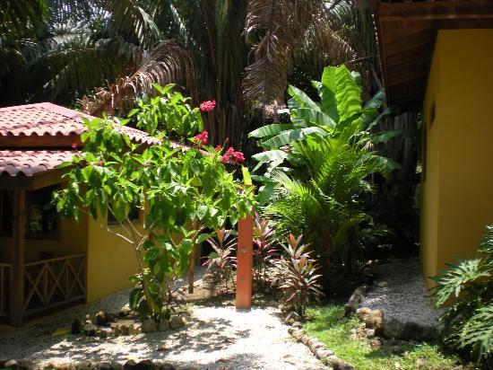 Esencia Hotel & Villas : exterior shower