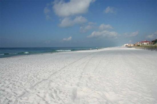 Tripadvisor Restaurants Pensacola Beach