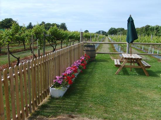 La Mare Wine Estate: The grounds (DavidUK584)