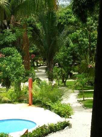 Esencia Hotel & Villas: Landscape