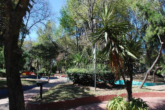 Garden of art jardin del arte