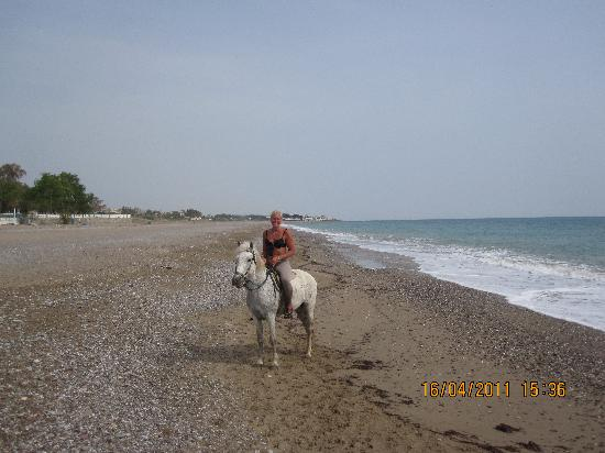 Lyra Resort & Spa: Horse back riding on the beach