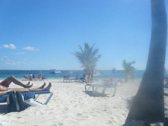 IFA Villas Bavaro Resort & Spa: Ocean View