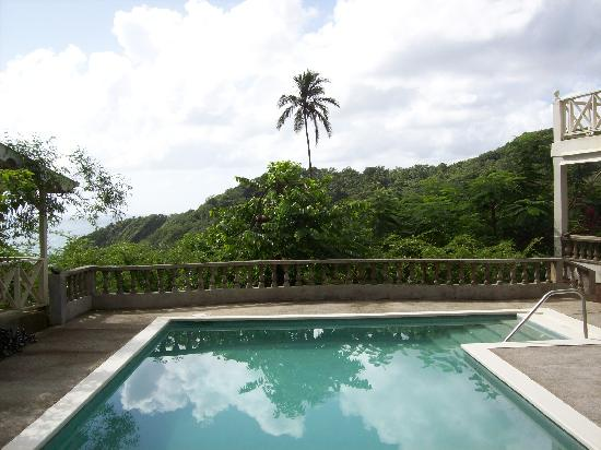 Beau Rive : POOL WITH VIEW