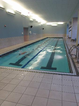 Indoor 25 yard pool - Picture of Radisson Blu Aqua Hotel, Chicago ...