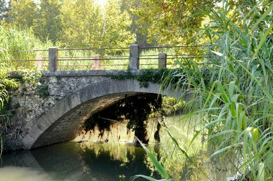 Moulin de la Roque: Old bridge to reach the estate