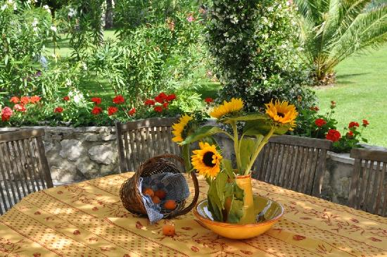 Moulin de la Roque: Your private terrace provencal