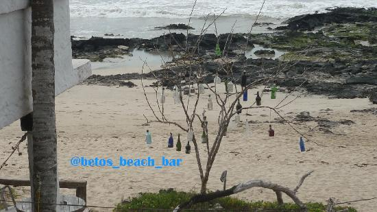 Beto's Beach Bar Hotel: el arbolito del bar