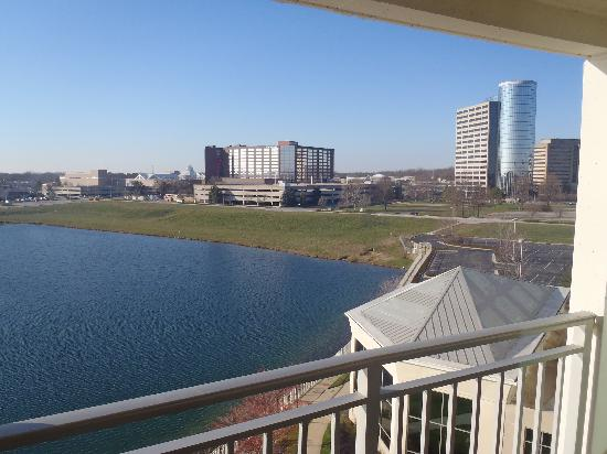 Indianapolis Marriott North: View