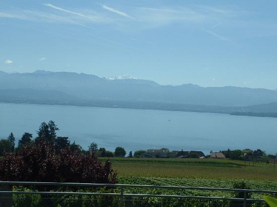 A la Clef d'Or : La vista dalla terrazza su vigneti, lago e Monte Bianco