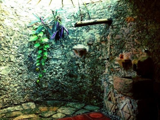Hacienda Hotel Santo Domingo: shower