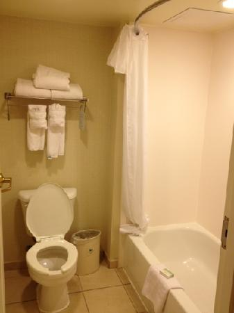 Homewood Suites Dulles International Airport: bath