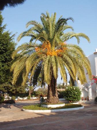 Quinta Da Ameijeira: View