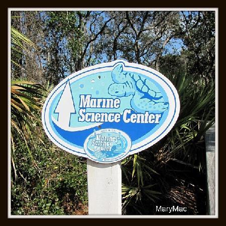 Marine Science Center: Welcome Center