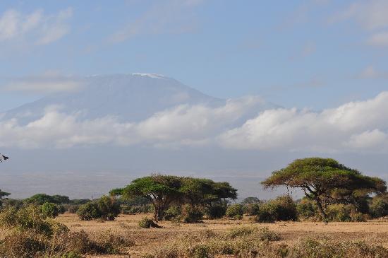 Sentrim Amboseli: Mt. Kilimanjaro