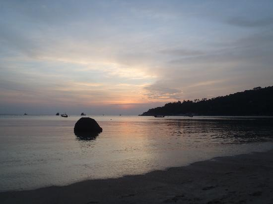 Ko Tao Diving Tour - Buddha View Dive Resort: Koh Tao beach