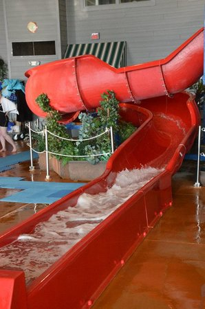Holiday Inn Express Hotel & Suites Milwaukee Airport:                   Red slide - kids ages 2-7 had so much fun