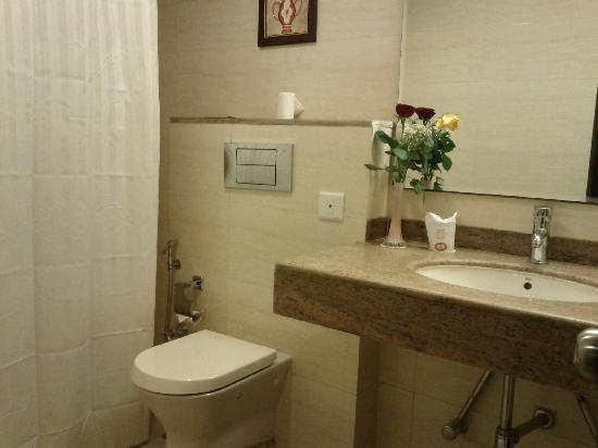 Classic Diplomat - New Delhi: Bathroom
