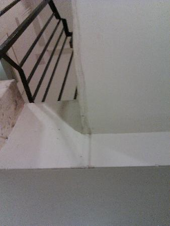 Nicolson Apartments: mold and water damage in the hallway