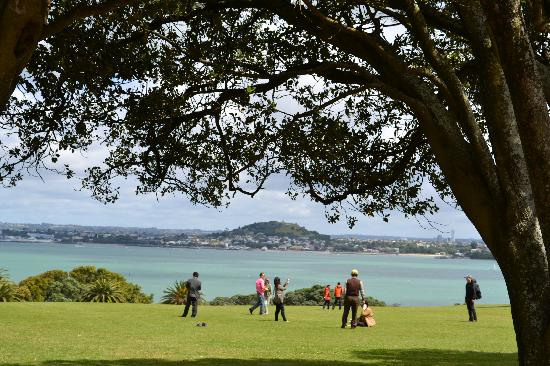 Auckland Hop On Hop Off Explorer: View from Bastion Point