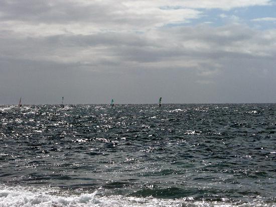 Paia, Hawái: Surfer