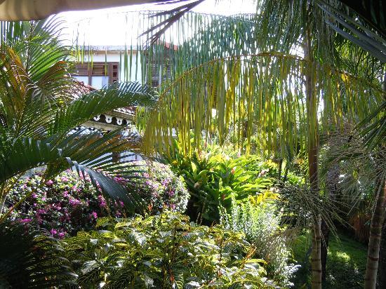 La Villa Sapotille: Il giardino di Villa Sapotille