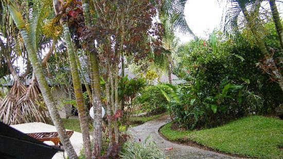 Mangoes Resort: Lush flora