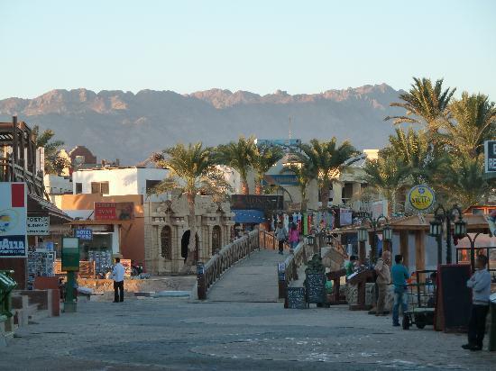 Dahab Paradise: the centre of Dahab