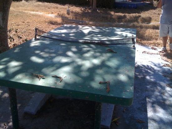 Parador Del Sol Acapulco: mesa para ping pong? mmmmm.....