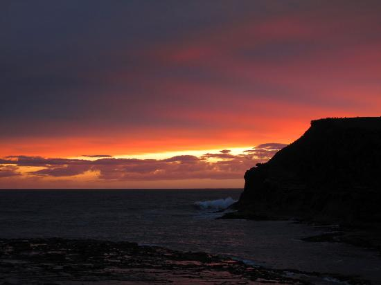 Catlins Farmstay B&B: Curio Bay at sunset