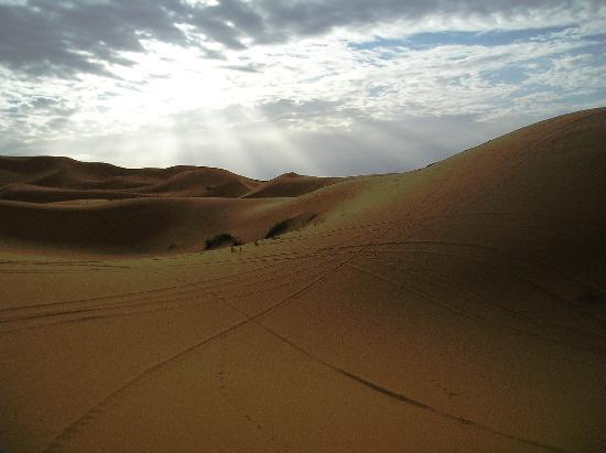 Sahara Tours 4x4 : Desierto